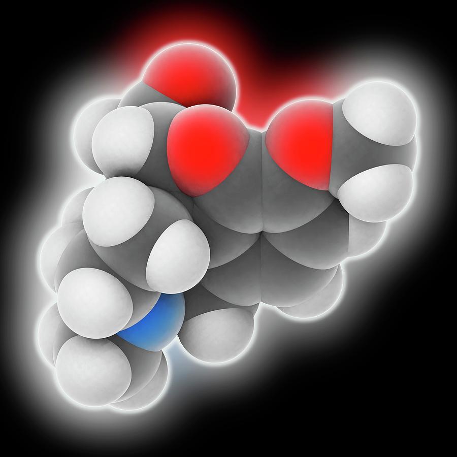 Analgesia Photograph - Hydrocodone Drug Molecule by Laguna Design