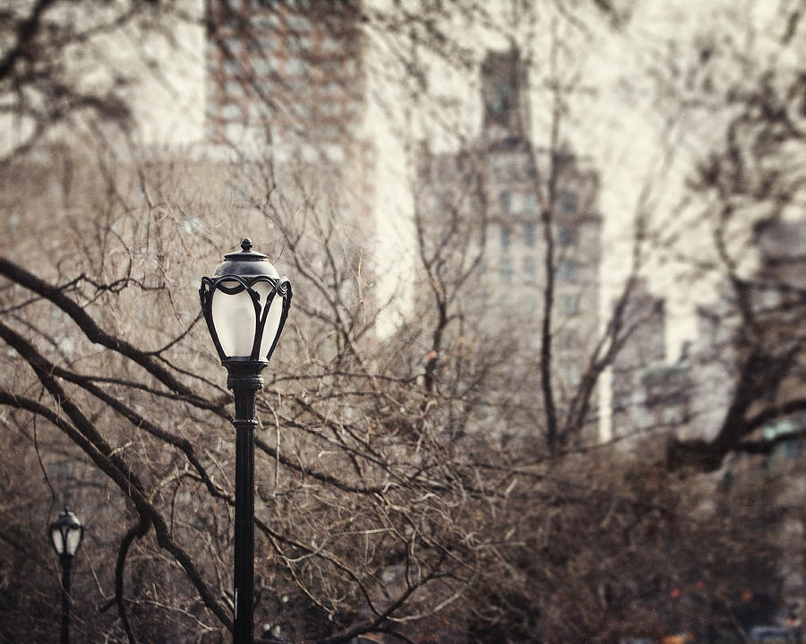 New York City Photograph - In The Shadow Of The Upper East Side  by Lisa Russo
