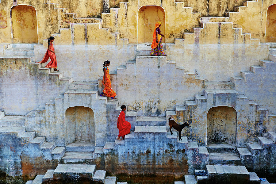 India, Rajasthan, Jaipur, Water Tank Photograph by Tuul & Bruno Morandi