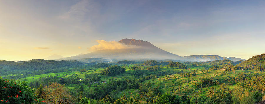 Indonesia, Bali, Forest And Gunung Photograph by Michele Falzone