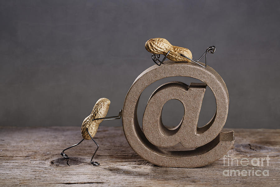 Simple Photograph - Internet by Nailia Schwarz