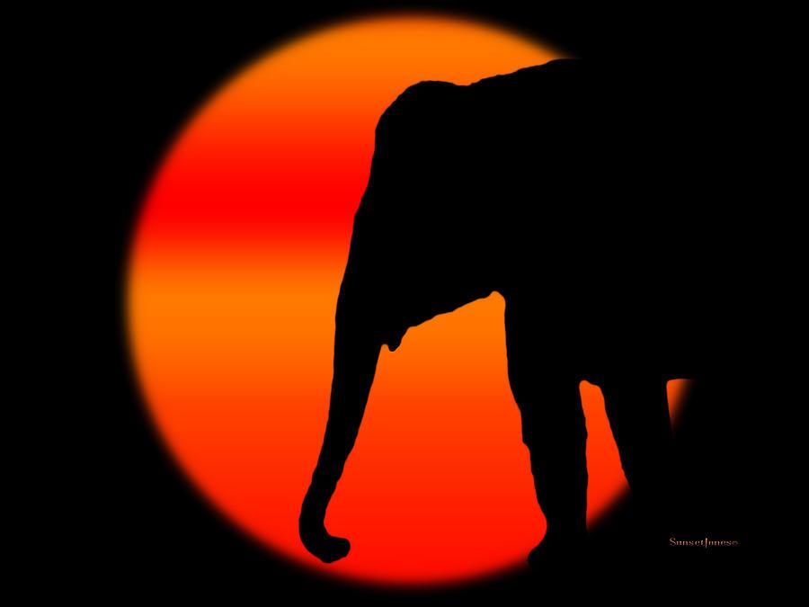 Elephant Digital Art - Into The Night by Robert Orinski
