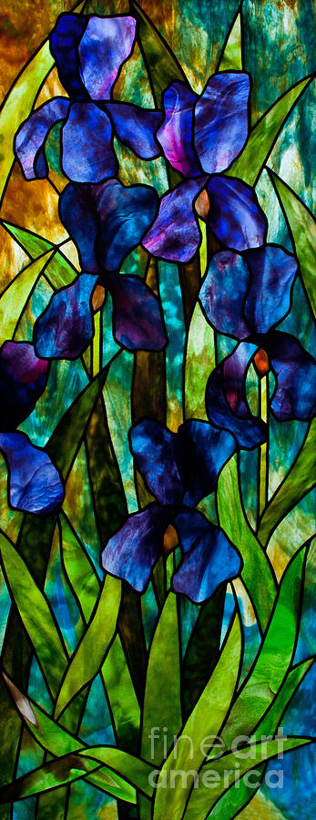 Copper Foil Glass Art - Iris by David Kennedy