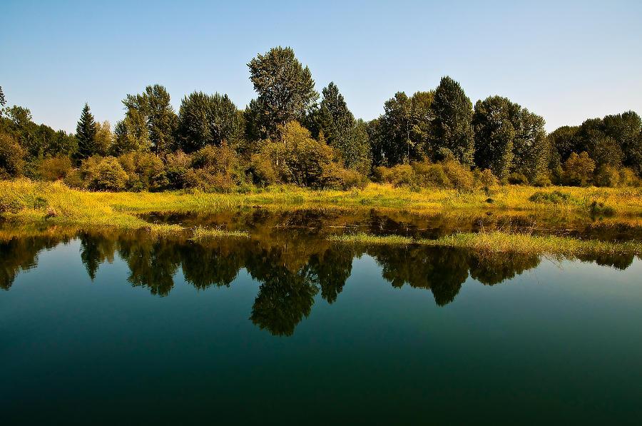 Reflection Photograph - Johnson Creek by Randolph Fritz