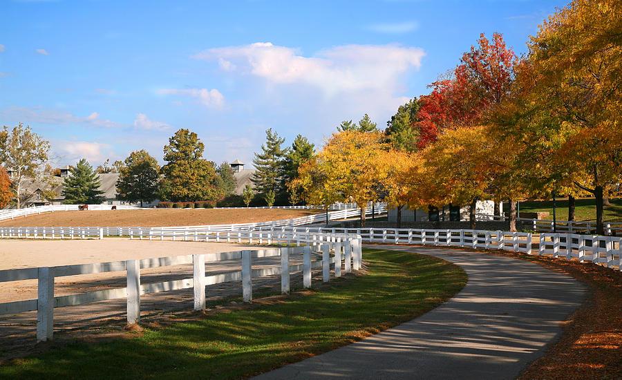 Kentucky Horse Farm Photograph By Mark Ross