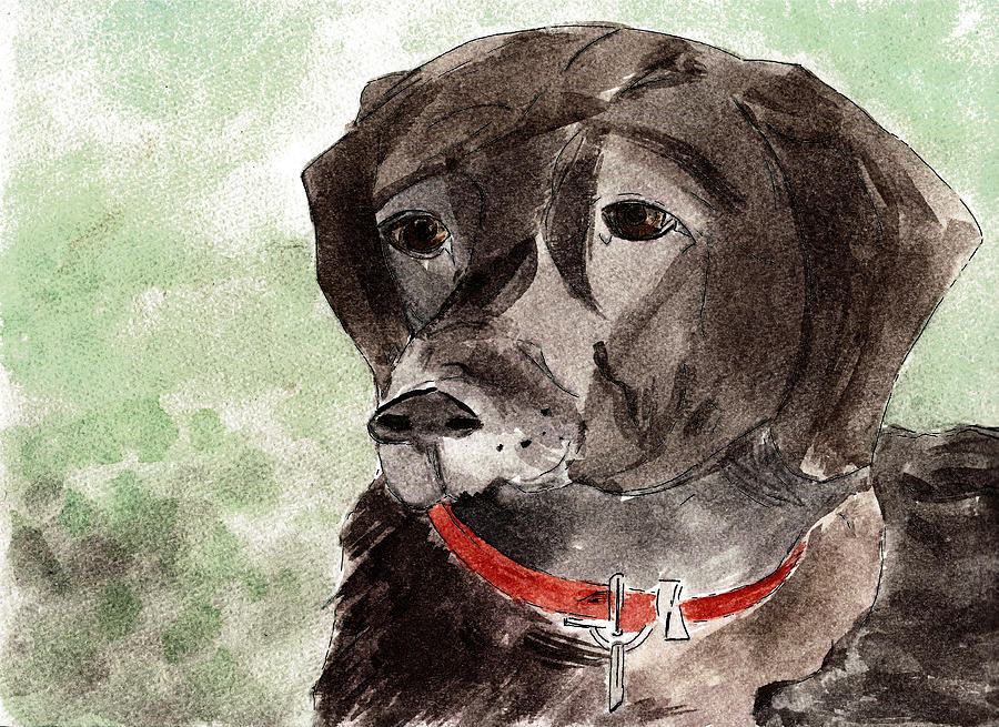 Dog Painting - Labrador Retriever by Elizabeth Briggs