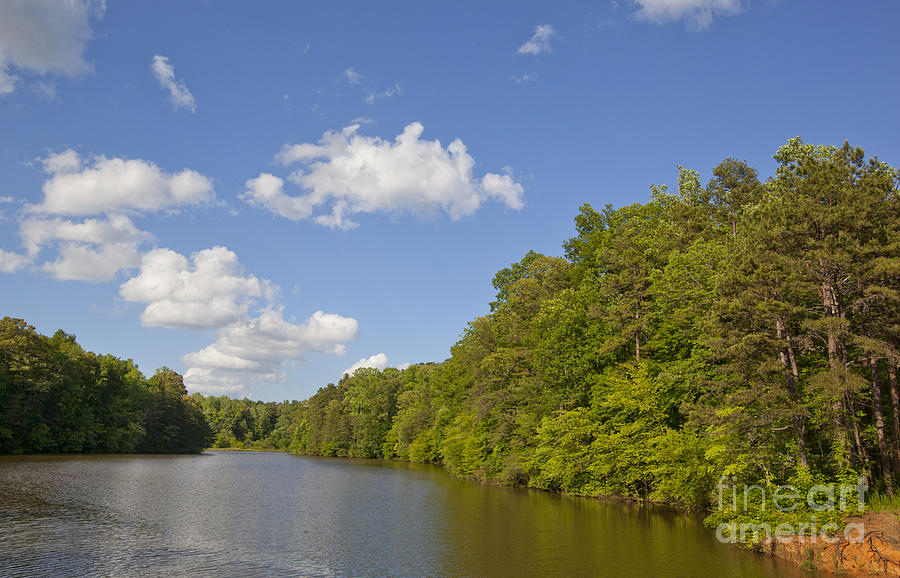 Water Photograph - Lake Norman Cove by Jonathan Welch