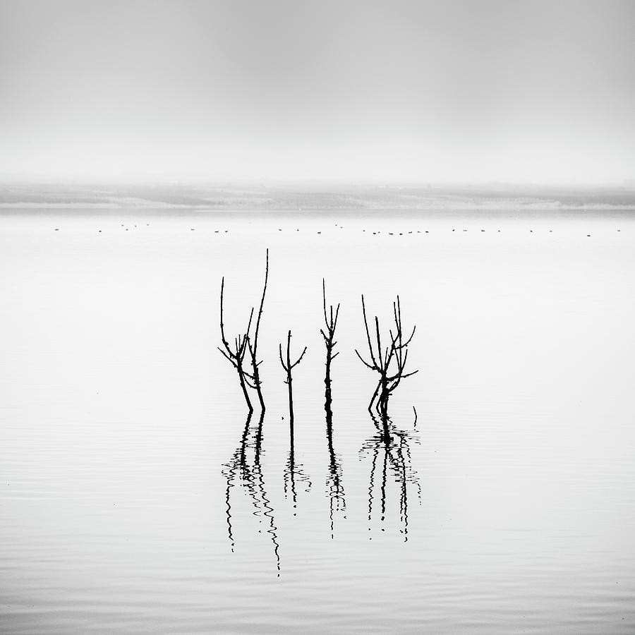 Lake Photograph - Lake Reflections by George Digalakis