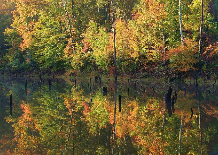 Lake Wedowee Alabama Photograph