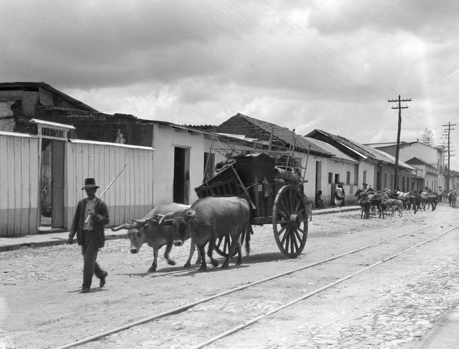 1920 Photograph - Latin America, C1920 by Granger