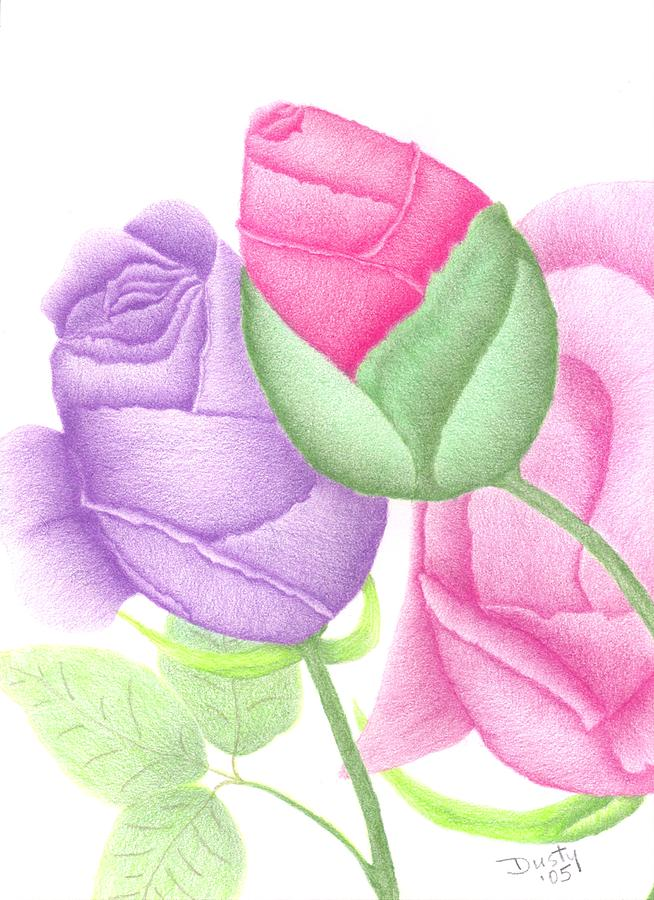 Roses Drawing - Lavender Love Buds by Dusty Reed
