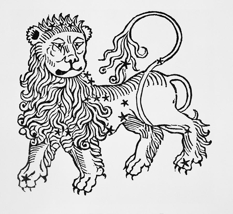 Leo Drawing - Leo by Italian School