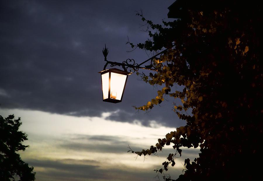Light Photograph - Light by Joanna Madloch