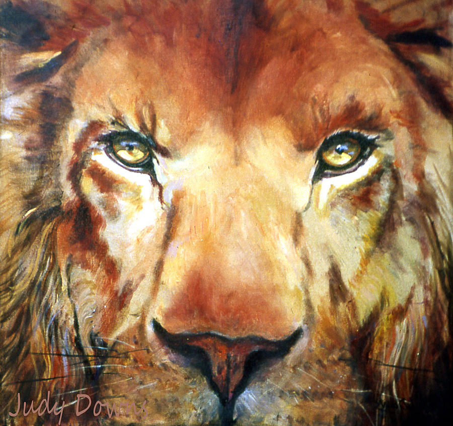 Lion Painting - Lion Eyes by Judy Downs
