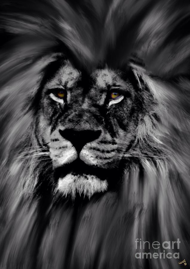 Lion Eyes Photograph