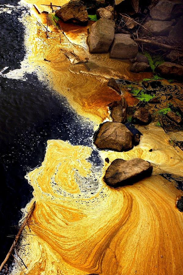 Liquid Gold Photograph - Liquid Gold by Marcia Lee Jones