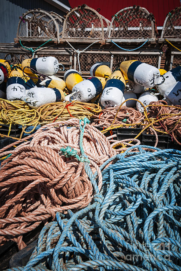 Floats Photograph - Lobster Fishing by Elena Elisseeva