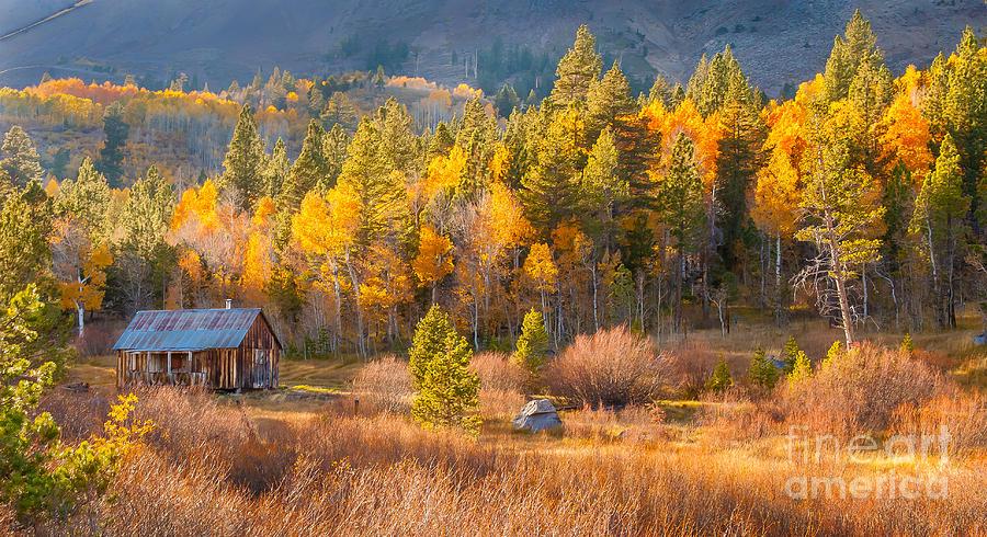 Eastern Sierras Photograph - Lone Cabin by Charles Garcia