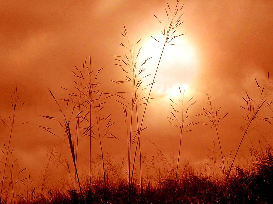 Sun Photograph - Lonely Planet by Nirdesha Munasinghe