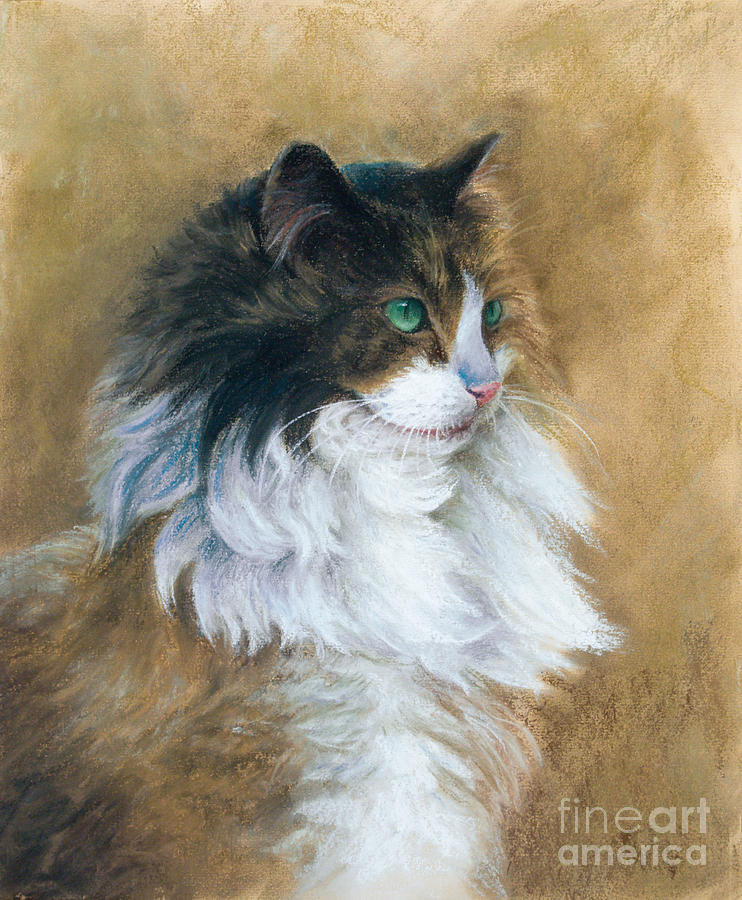 Cat Painting - Longhaired by Tobiasz Stefaniak