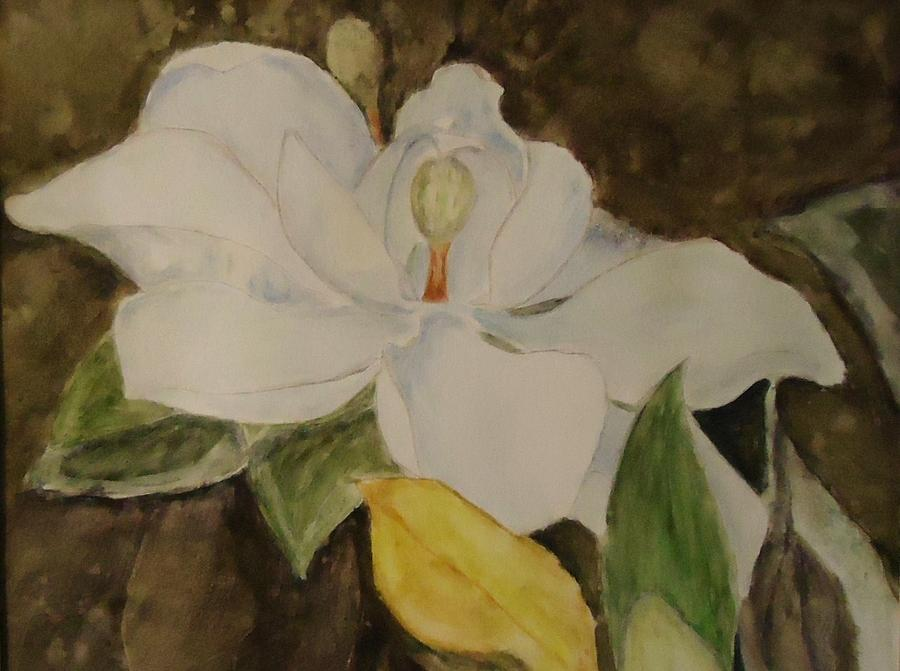 Magnolia Grandiflora Painting - Longue Vue Magnolia by Katie Spicuzza