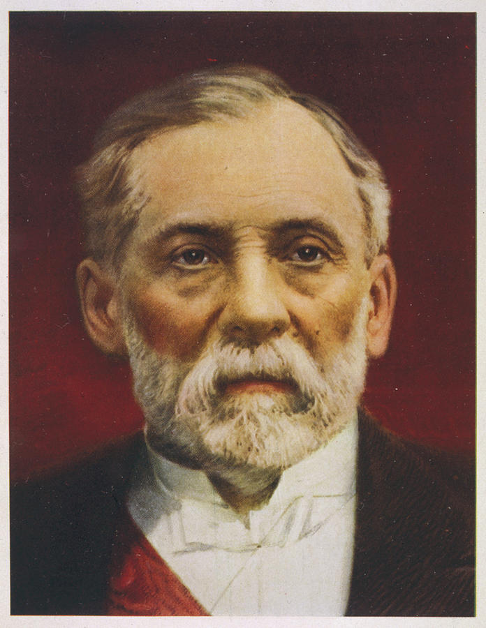 Louis Drawing - Louis Pasteur (1822 - 1895) French by Mary Evans Picture Library