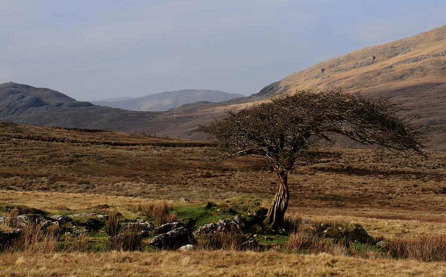 Maam Vallev Connemara Galway Ireland Photogrphy Pskeltonphoto Nature Landscape Prints Canon Photograph - Maam Valley by Peter Skelton