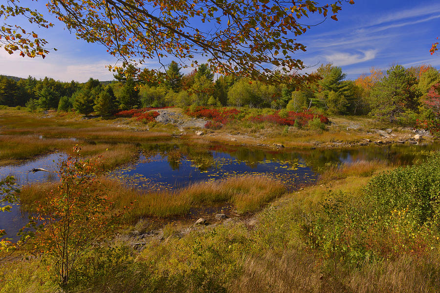 Fall Photograph - Maine Fall Colors by Stephen  Vecchiotti