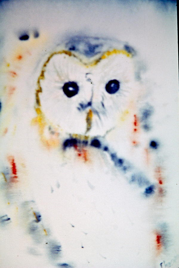 Watercolor Painting - Marthas Owl by Phoenix Simpson