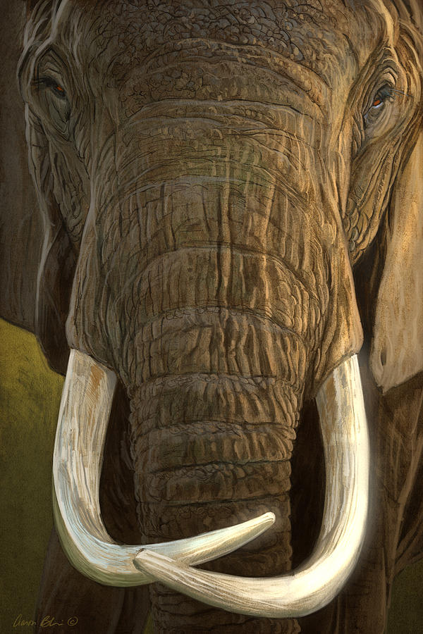 Elephant Digital Art - Matriarch 2 by Aaron Blaise