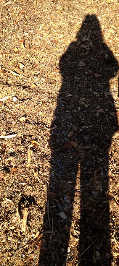 Me and My Shadow by Carolyn Donnell