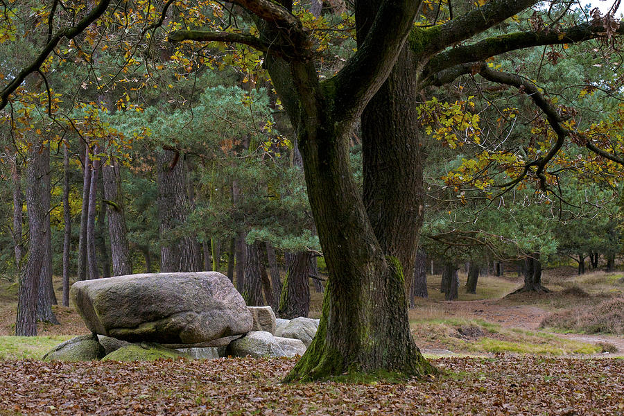 Megalithic Photograph - Megalithic Tombe by Frits Selier
