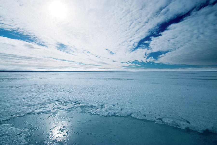 Cloud Photograph - Melting Arctic Sea Ice by Louise Murray/science Photo Library