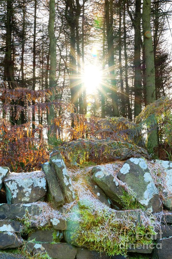 Sun Photograph - Melting The Mist by David Birchall
