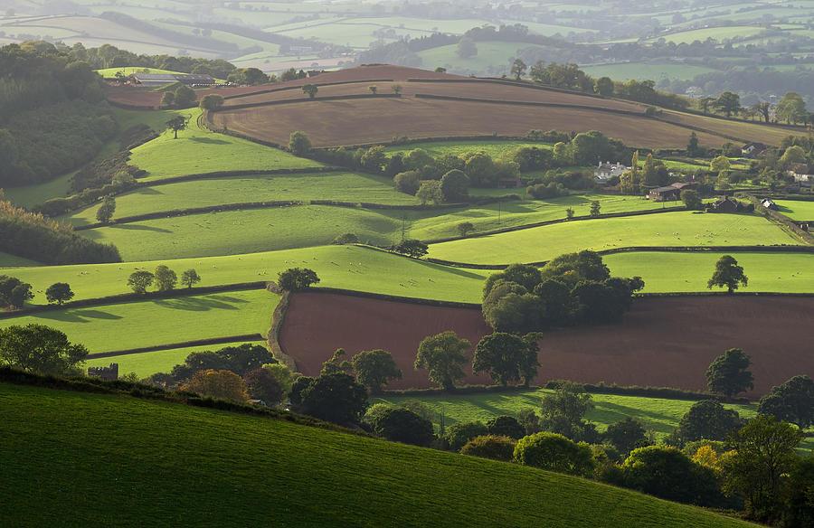 Fields Photograph - Mid Devon Fields by Pete Hemington