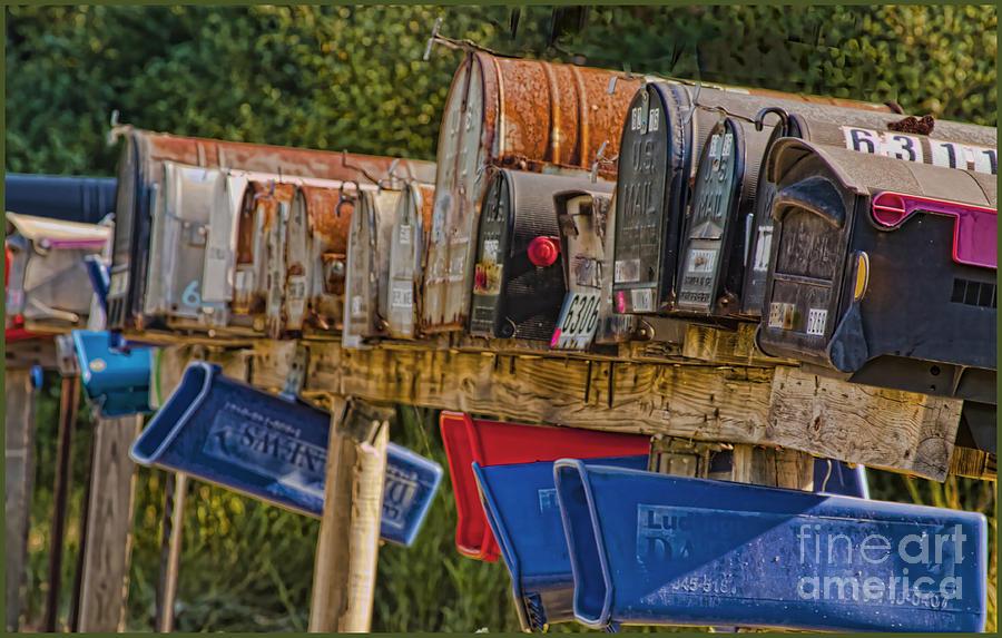Photograph - Mister Postman by Timothy J Berndt