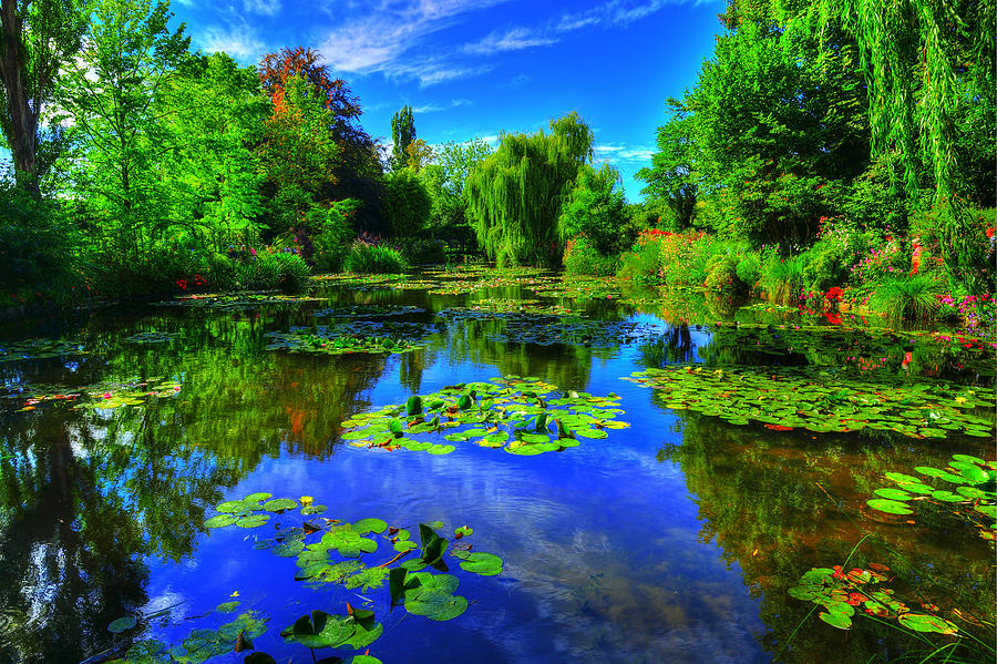Monet Photograph - Monets lily pond by Midori Chan