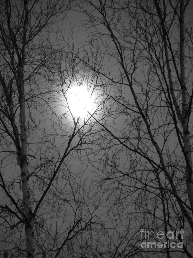 Moon Photograph - Moon by Jennifer Kimberly