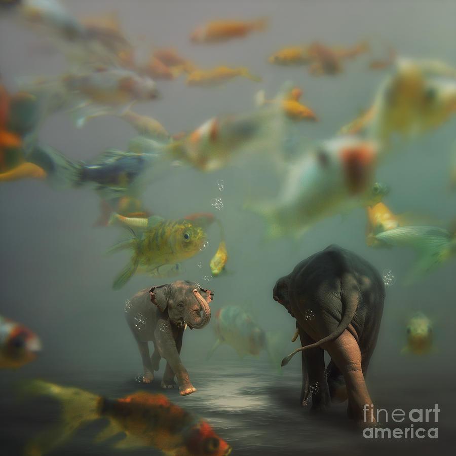 Elephant Photograph - Mornin by Martine Roch