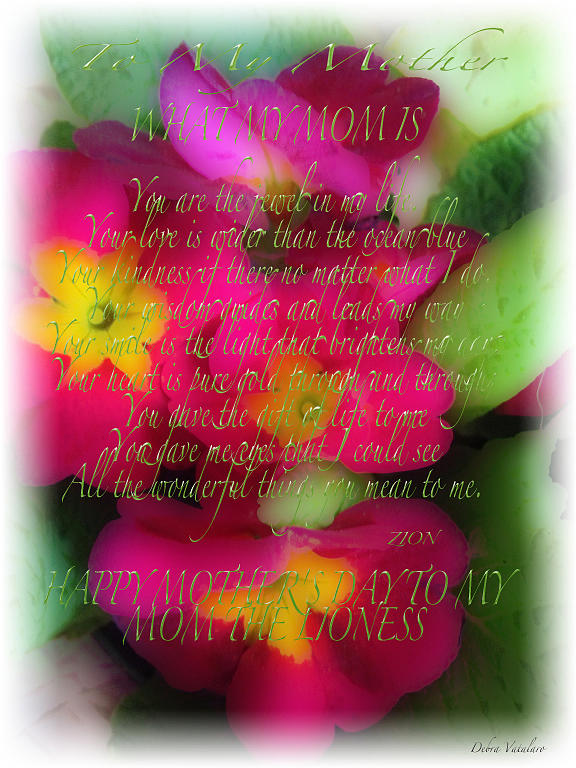 Mothers Day Poem Card Photograph - Mothers Day Poem by Debra     Vatalaro