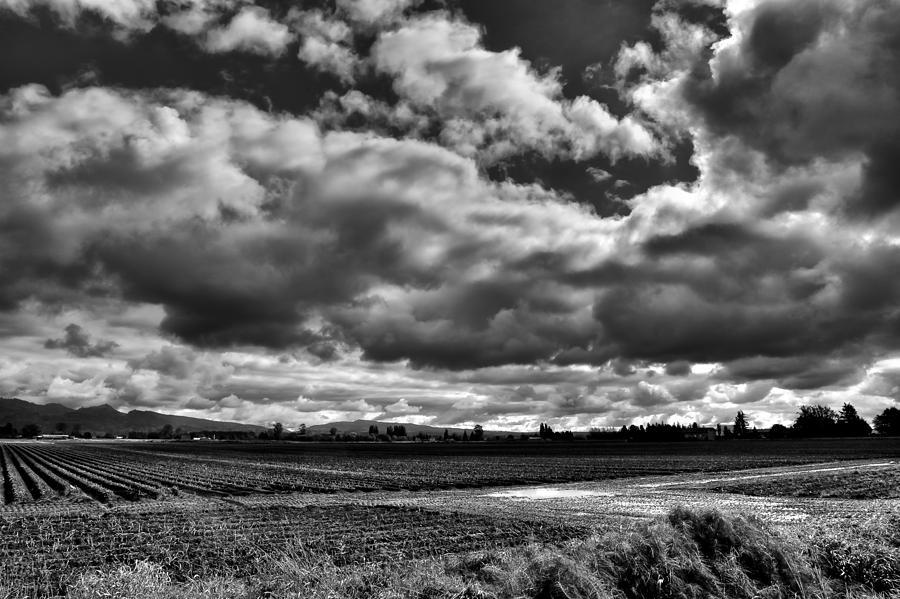 Mount Vernon Washington Photograph - Mount Vernon Farmland - Washington State by David Patterson