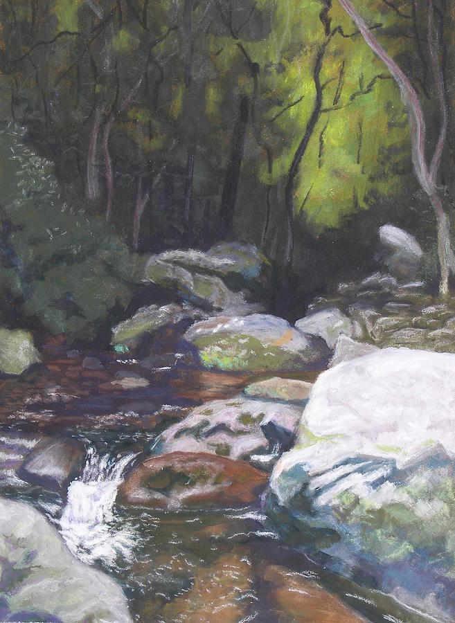 Mountain Stream at Dusk by Robert Decker