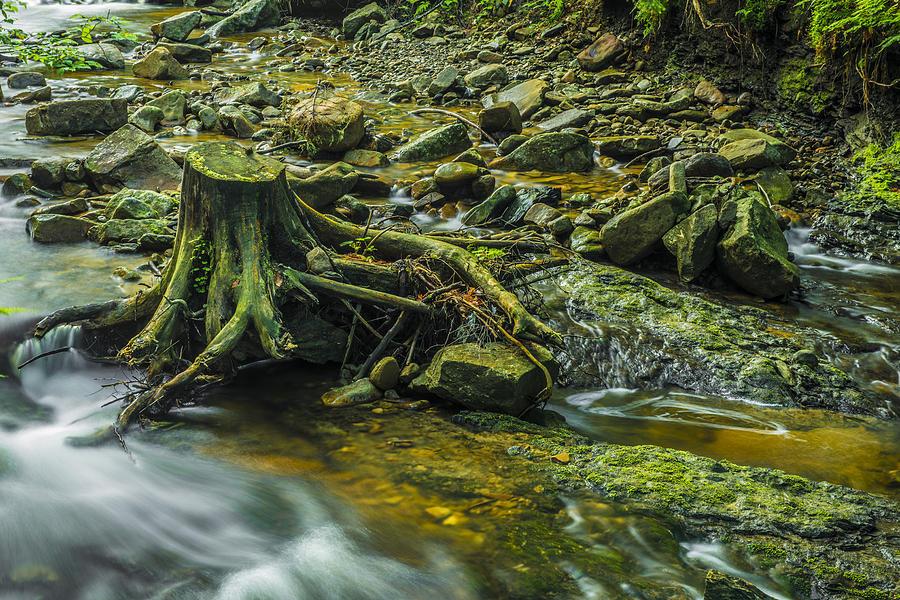 Background Photograph - Mountain Stream by Jaroslaw Grudzinski