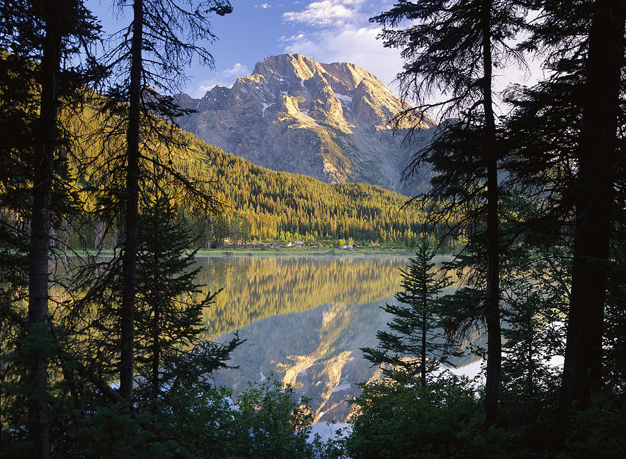 Mt Moran And String Lake Wyoming Photograph by Tim Fitzharris