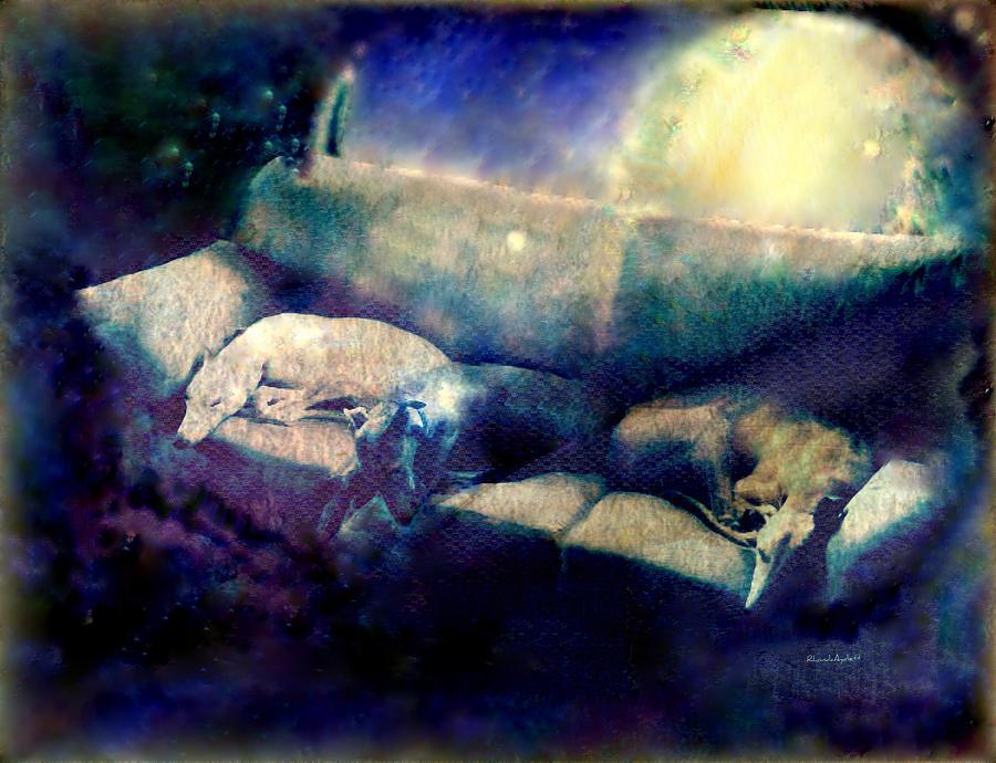 Nap Time Dreams Mixed Media by YoMamaBird Rhonda