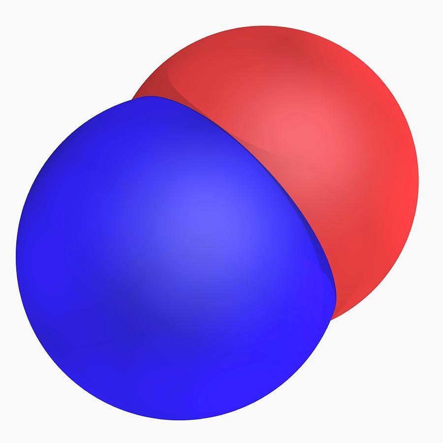 Artwork Photograph - Nitrogen Monoxide Molecule by Laguna Design/science Photo Library