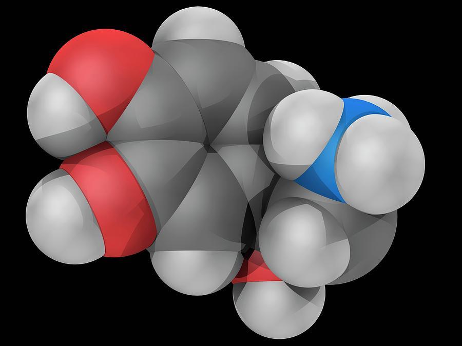 Artwork Photograph - Norepinephrine Molecule by Laguna Design/science Photo Library