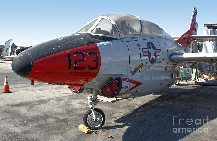 North American Buckeye T2-a Photograph - North American Buckeye T2-a by Gregory Dyer