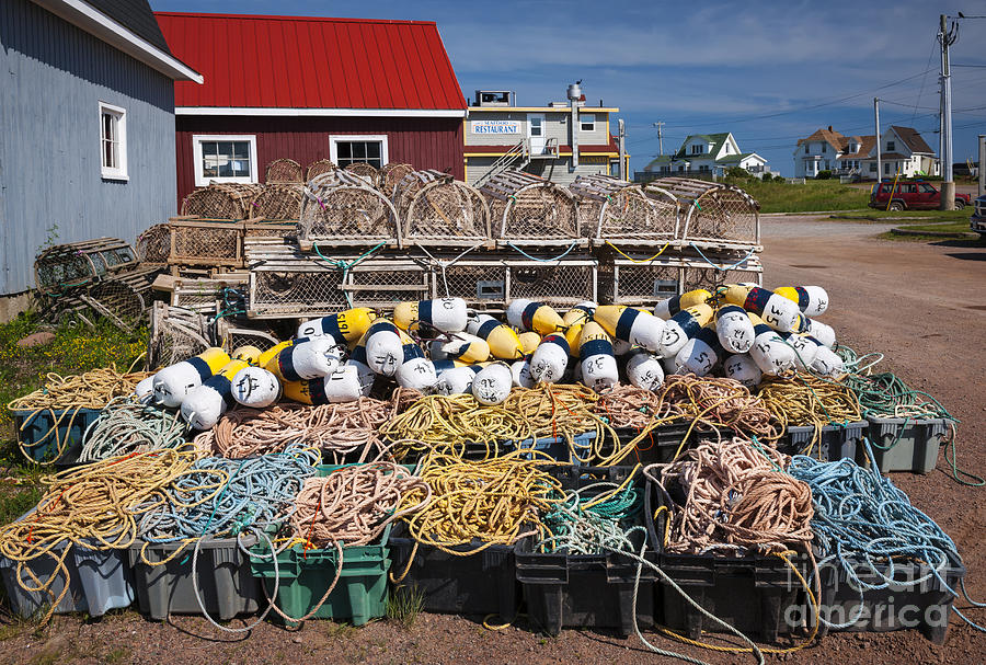 Floats Photograph - North Rustico by Elena Elisseeva