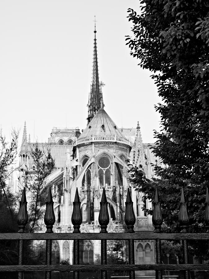 Notre Dame Cathedral Photograph - Notre Dame Cathedral from Behind - Paris by Barry O Carroll